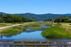 賀茂川の写真素材 [FYI03960915]