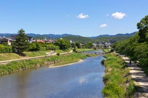 賀茂川の写真素材 [FYI03960916]