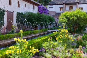 フェネラリーフェ庭園の写真素材 [FYI03961059]