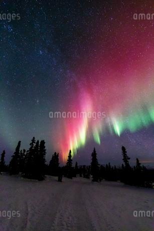 アラスカ フェアバンクスのチェナ山頂から見たオーロラの写真素材 [FYI03961333]