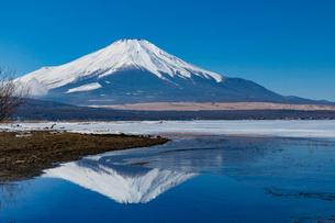 逆さ富士 山中湖の写真素材 [FYI03961367]