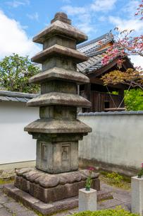 織田有楽斎の墓の写真素材 [FYI03961400]