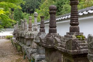 徳源院 京極家の墓所の写真素材 [FYI03961412]