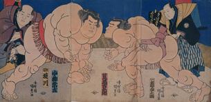 國貞 大相撲の図のイラスト素材 [FYI03961722]