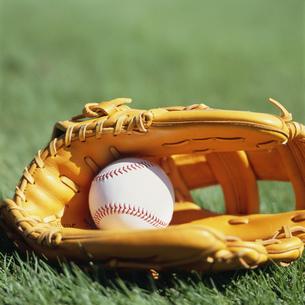 野球のグローブとボールの写真素材 [FYI03961953]