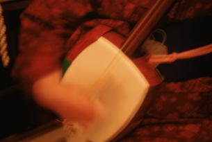 津軽三味線の演奏の写真素材 [FYI03962878]