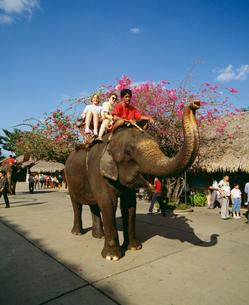 ゾウに乗る親子 ローズガーデンの写真素材 [FYI03962893]