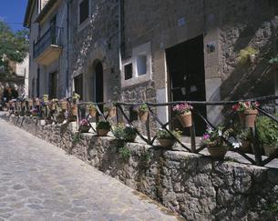 花のある村 バルデモサ  9月 マヨルカ島 スペインの写真素材 [FYI03964900]