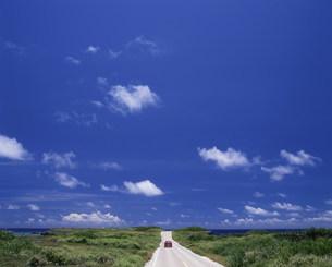 東平安名崎の道の写真素材 [FYI03966392]
