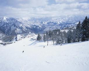 GALA湯沢スキー場の写真素材 [FYI03966615]