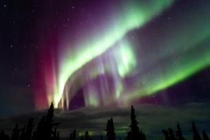 アラスカ フェアバンクスのオーロラの写真素材 [FYI03967491]