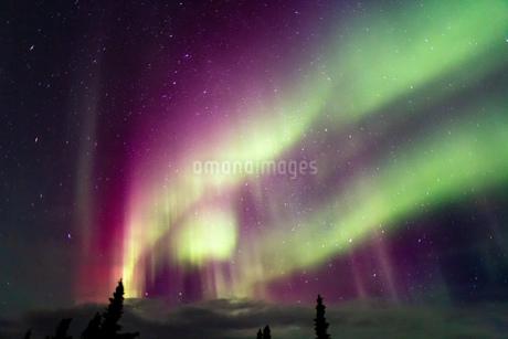アラスカ フェアバンクスのオーロラの写真素材 [FYI03967512]