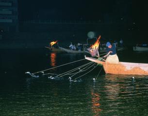 長良川の鵜飼いの写真素材 [FYI03968332]