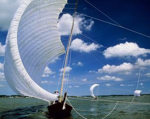 霞ヶ浦の観光帆引船の写真素材 [FYI03968482]