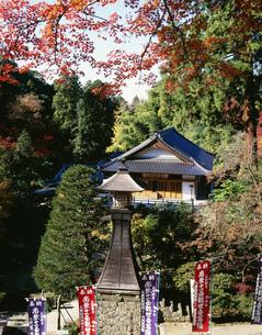 紅葉の清水寺の写真素材 [FYI03970614]