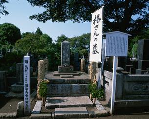 格さんの墓 保和苑の写真素材 [FYI03971460]