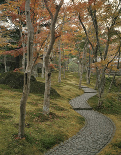 箱根美術館の写真素材 [FYI03972403]