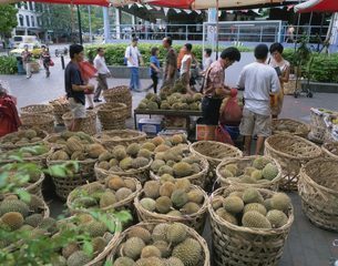 ドリアン市場 ブキス通り シンガポールの写真素材 [FYI03972663]