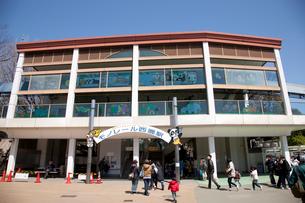 上野動物園のモノレール駅の写真素材 [FYI03972791]
