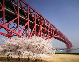 港大橋 住之江区と港区を結ぶ橋の写真素材 [FYI03973753]