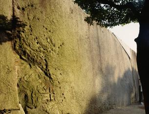 大阪城の蛸石の写真素材 [FYI03973754]