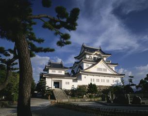 岸和田城の写真素材 [FYI03973849]
