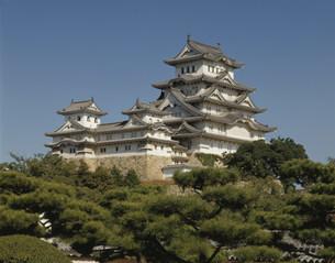 姫路城の写真素材 [FYI03974075]