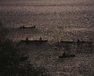 きらめく琵琶湖の写真素材 [FYI03974117]