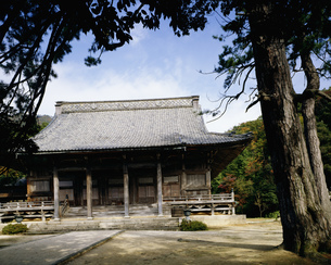 西福寺御影堂の写真素材 [FYI03974145]