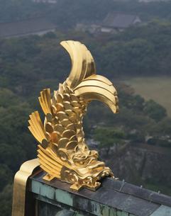 大阪城天守閣の鯱 中央区 8月の写真素材 [FYI03974257]