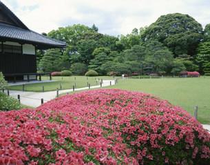 二条城二ノ丸庭園の写真素材 [FYI03974267]
