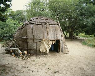 ハバモック住居跡  インディアン家 プリマスプランテーションの写真素材 [FYI03974591]