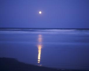 九十九里浜と月光の写真素材 [FYI03974611]