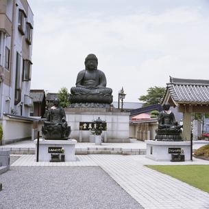 行田院大長寺の大仏の写真素材 [FYI03976078]
