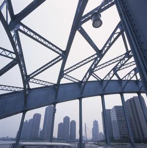 天を走る永代橋の写真素材 [FYI03976154]
