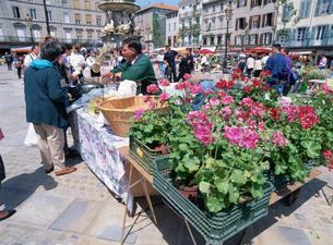 下町の市場の写真素材 [FYI03976989]