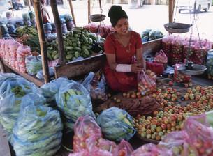 市場でトマトを売る女性の写真素材 [FYI03977319]