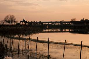 陽澄湖と蟹養殖場の夕景の写真素材 [FYI03977753]
