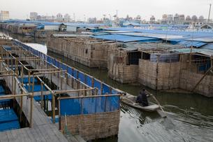 陽澄湖の蟹養殖場の写真素材 [FYI03977755]