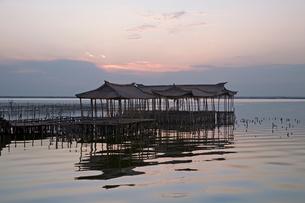 陽澄湖と蟹養殖場の夕景の写真素材 [FYI03977759]
