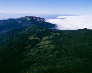 蔵王 芝草平と熊野岳の写真素材 [FYI03978067]