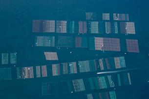 塩釜湾の養殖棚の写真素材 [FYI03978226]