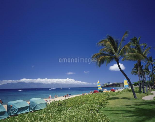 カアナパリ・ビーチの写真素材 [FYI03978911]