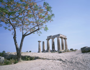 アポロン神殿 コリントスの写真素材 [FYI03979100]