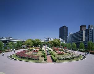 中之島公園 大阪市の写真素材 [FYI03980242]