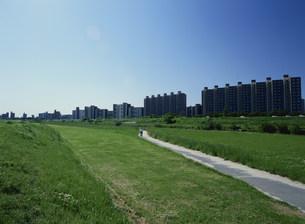 矢田川と団地の写真素材 [FYI03980631]