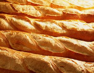 フランスパンの写真素材 [FYI03981001]