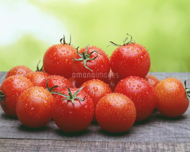 台の上のトマトの写真素材 [FYI03981039]
