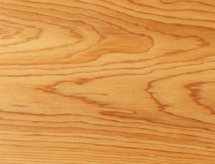 イチイの木目の写真素材 [FYI03981148]