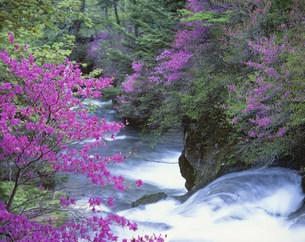 竜頭の滝の写真素材 [FYI03981179]